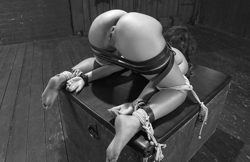 Bondage Their Toys Just Get More Expensive And Entertaining Erotic Beauties 1